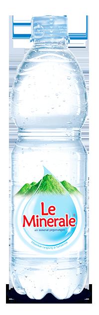 bottle 600
